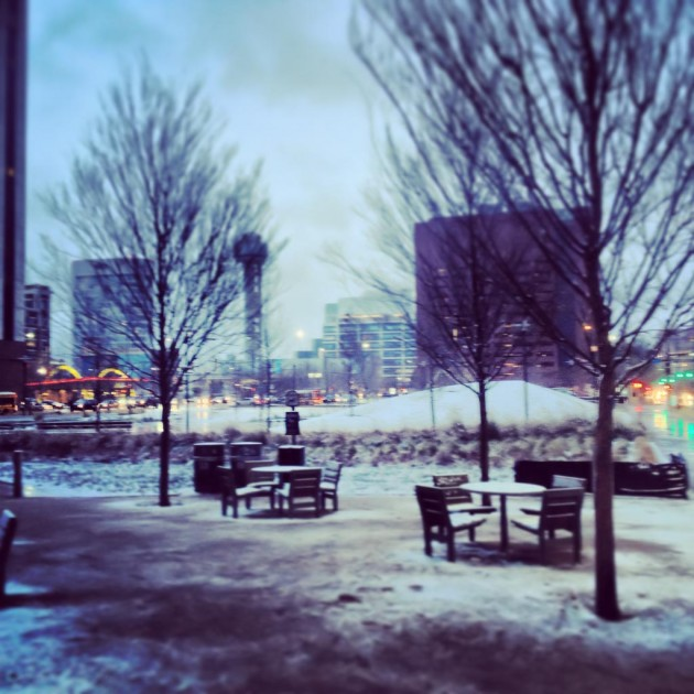 Unexpected Winter Wonderland